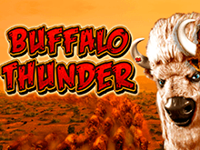 Buffalo Thunder – автомат от топового разработчика Новоматик