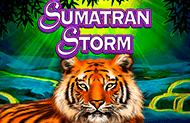 Игровой автомат Sumatran Storm