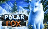 Polar Fox game